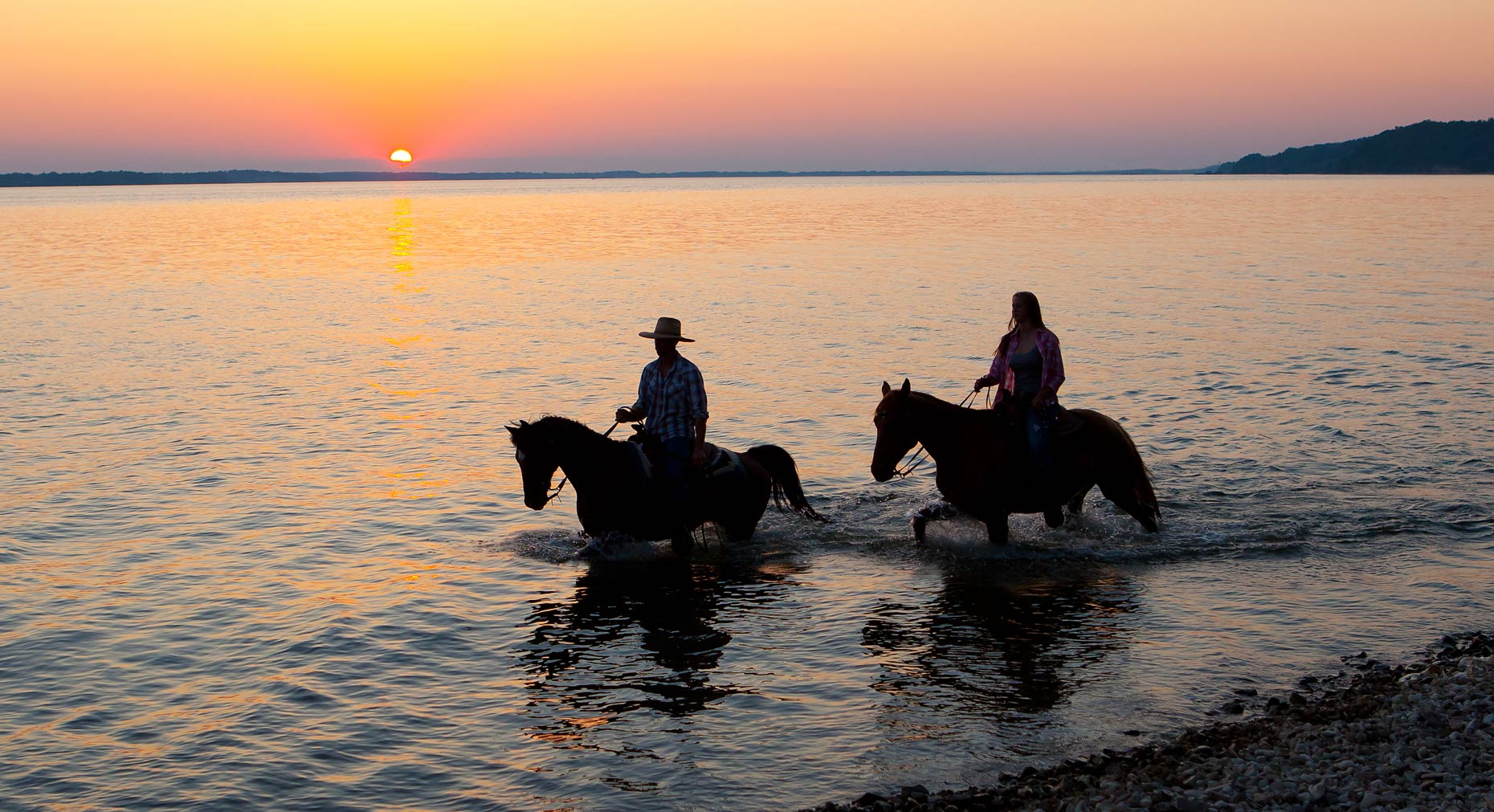 Horses_Walking_In_Lake